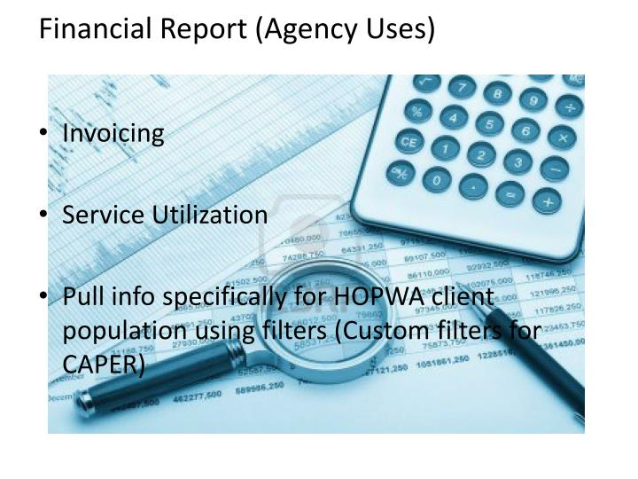Financial Report (Agency Uses)