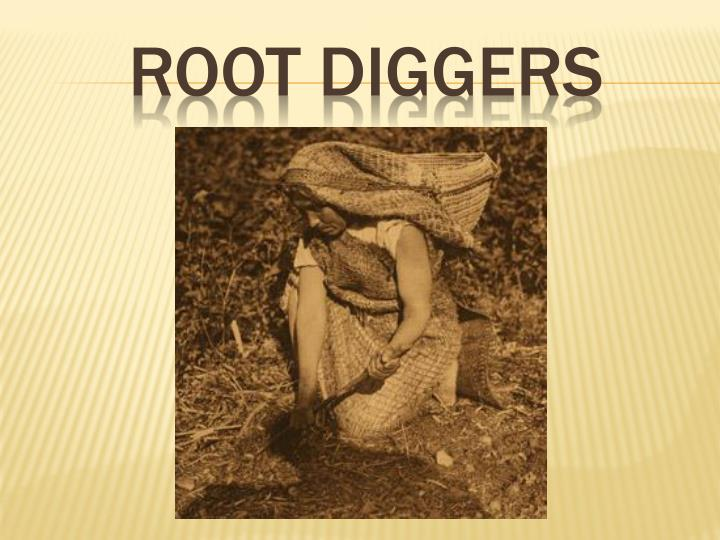 Root diggers