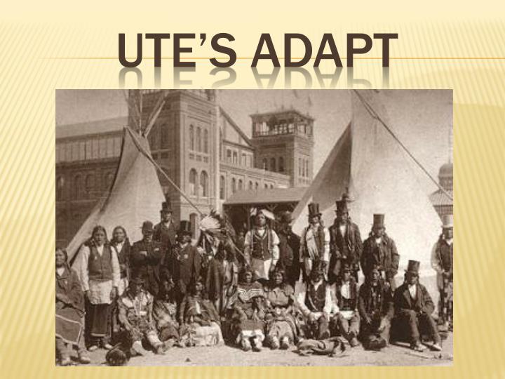 Ute's adapt
