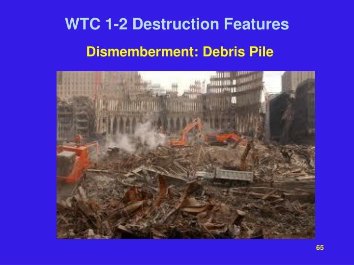 Dismemberment: Debris Pile