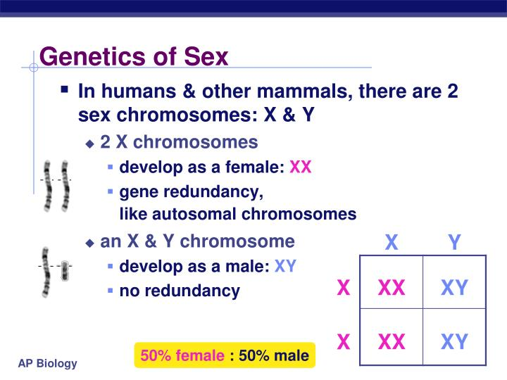 Genetics of Sex