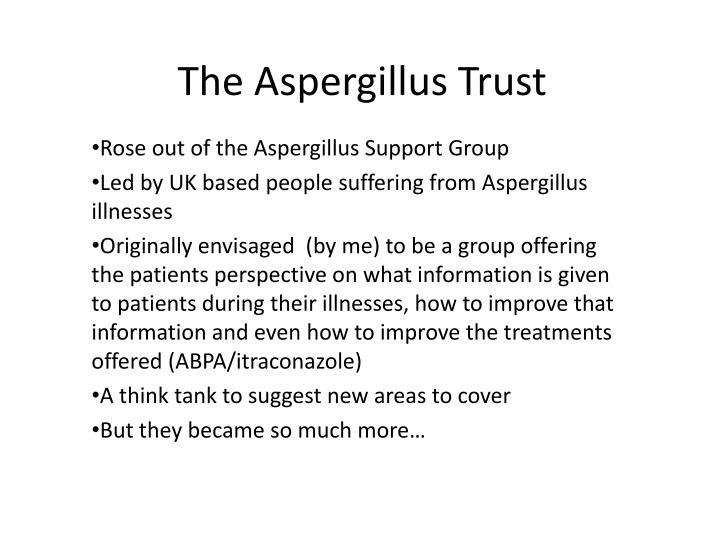 The Aspergillus Trust
