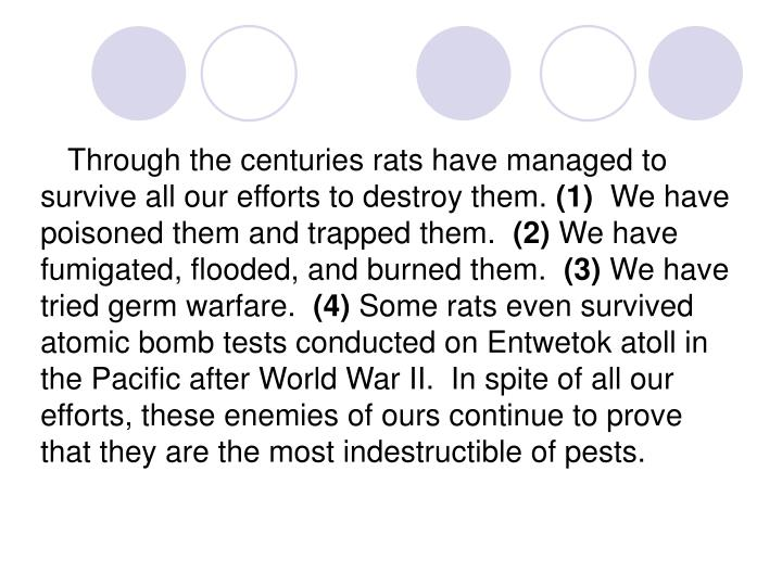 Through the centuries rats have managed to survive all our efforts to destroy them.