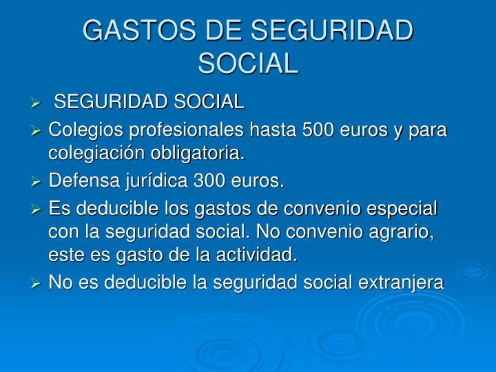 GASTOS DE SEGURIDAD SOCIAL