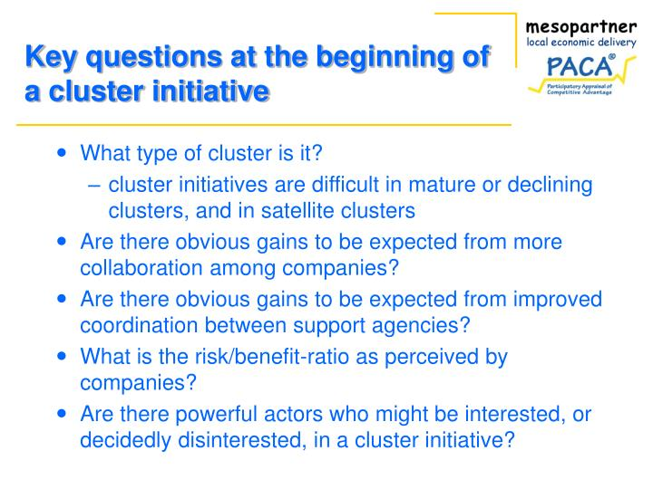 Key questions at the beginning of a cluster initiative