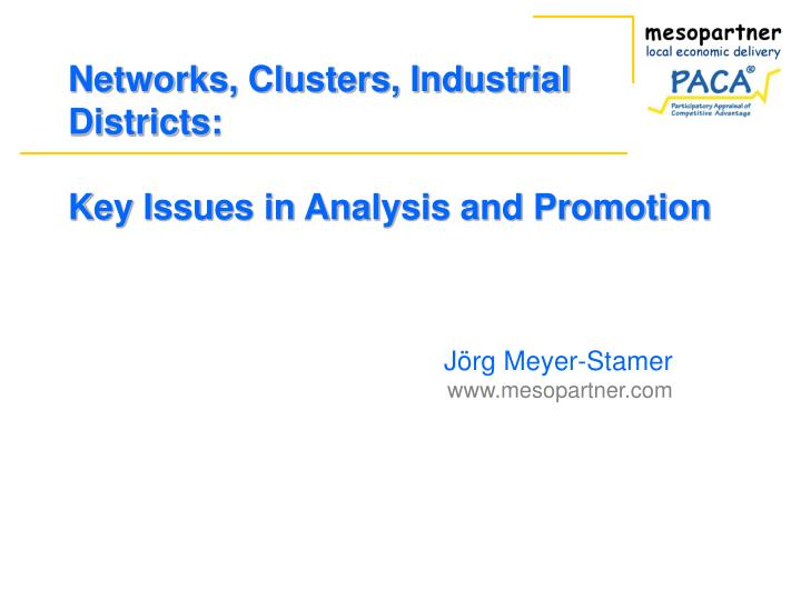 Networks clusters industrial districts key issues in analysis and promotion