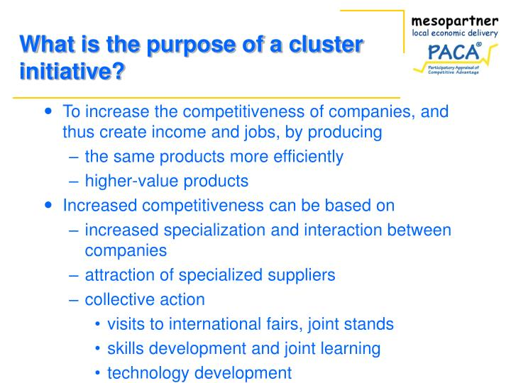 What is the purpose of a cluster initiative?