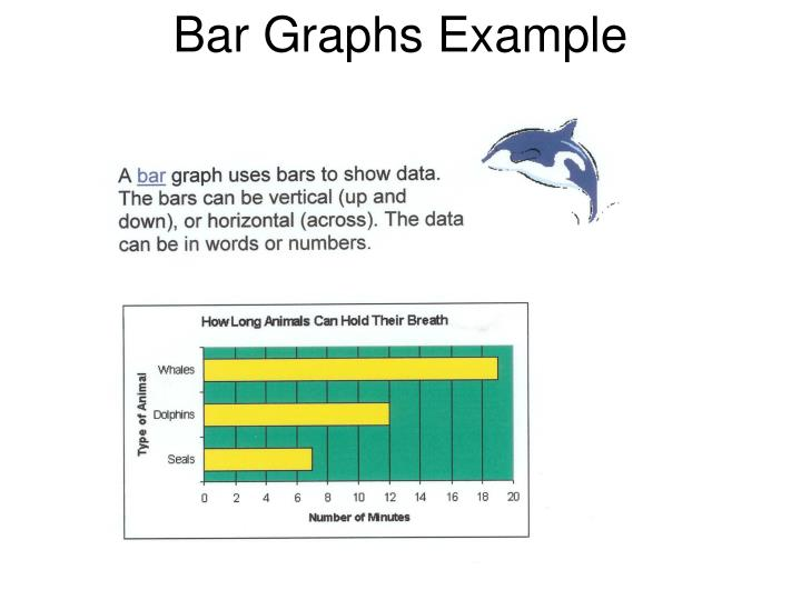 Bar Graphs Example
