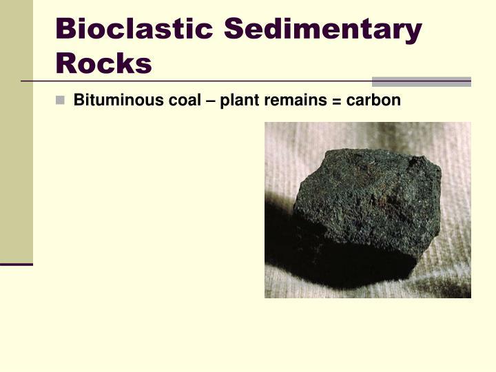 Bioclastic Sedimentary Rocks