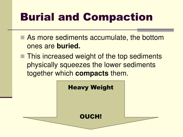 Burial and Compaction