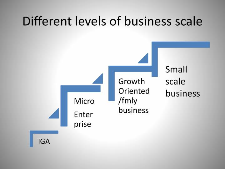 Different levels of business scale