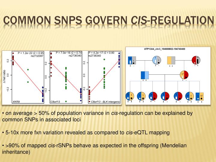 Common SNPs govern