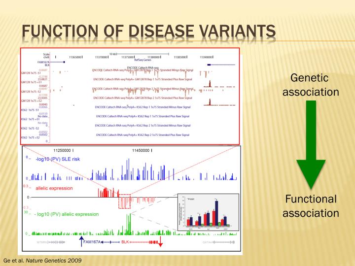 Function of Disease Variants