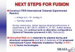 next steps for fusion