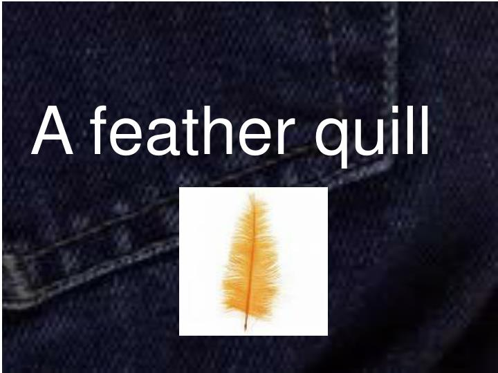 A feather quill