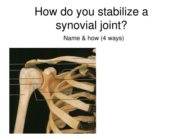 How do you stabilize a synovial joint?