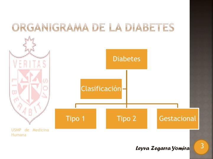 Organigrama de la diabetes