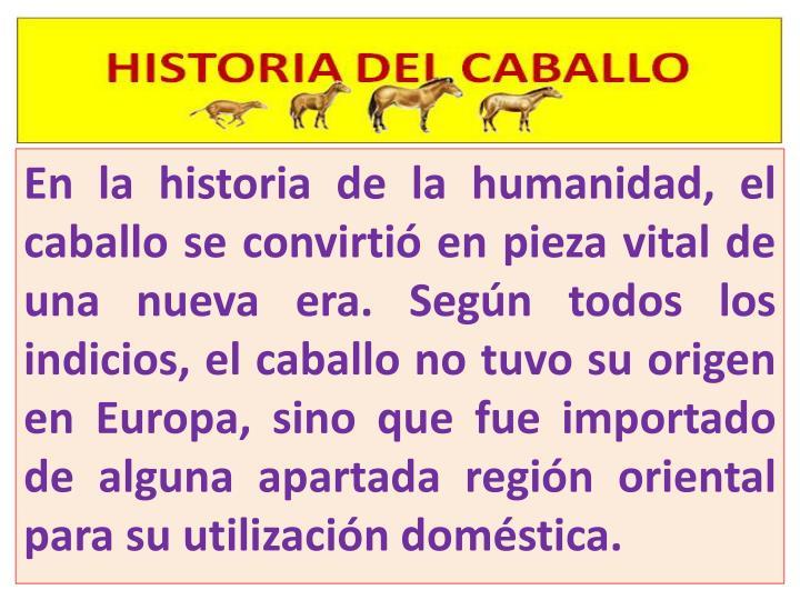 En la historia de la humanidad, el caballo se convirtió en pieza vital de una nueva era. Según todos los indicios, el caballo no tuvo su origen en Europa, sino que fue importado de alguna apartada región oriental para su utilización doméstica.