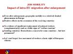 job mobility impact of intra eu migration after enlargement