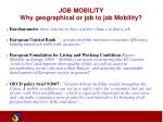 job mobility why geographical or job to job mobility1