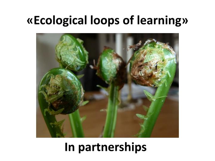 «Ecological loops of learning»