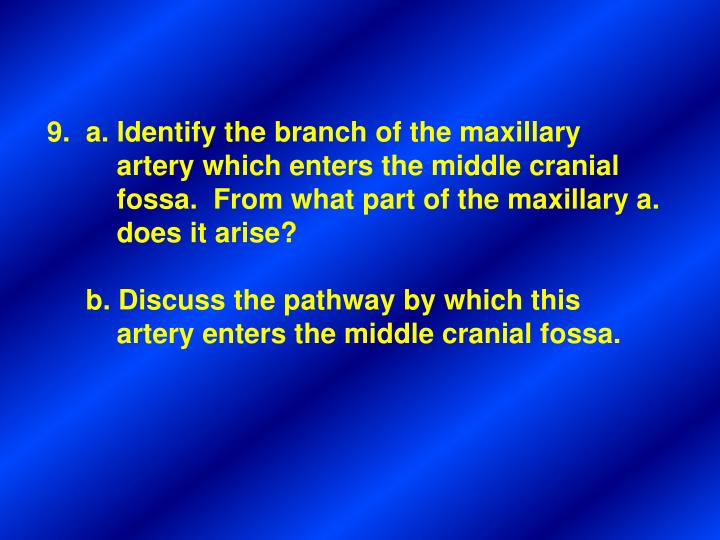 9.  a. Identify the branch of the maxillary