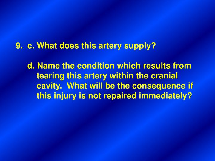 9.  c. What does this artery supply?