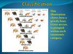 classification8