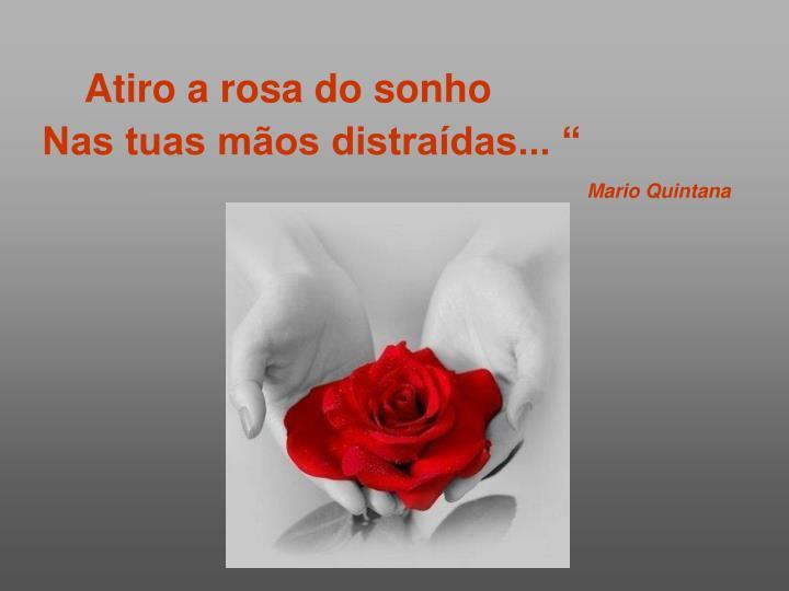 Atiro a rosa do sonho