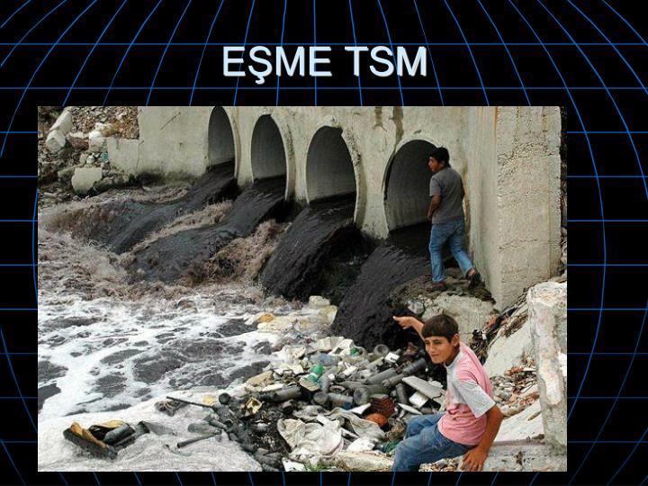 EŞME TSM