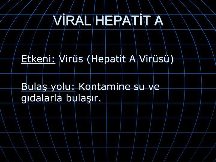 VİRAL HEPATİT A