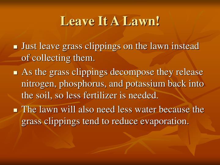 Leave It A Lawn!