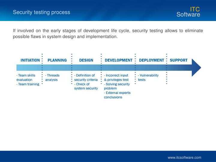 Security testing process