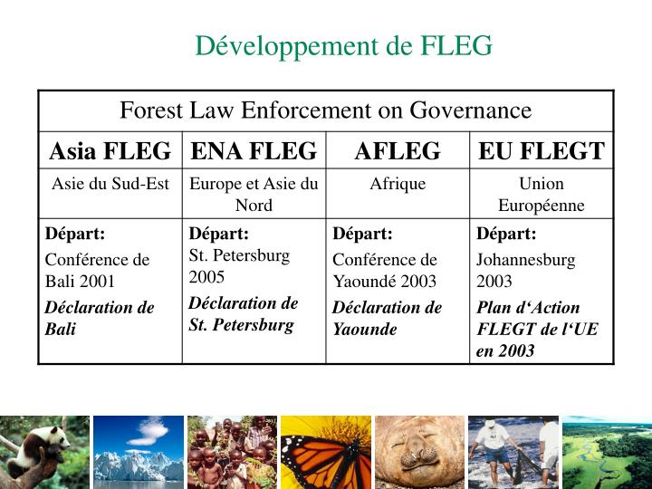 Développement de FLEG