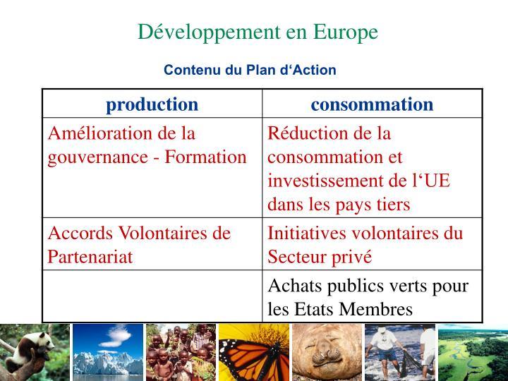 Contenu du Plan d'Action