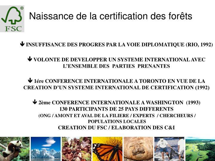 Naissance de la certification des forêts
