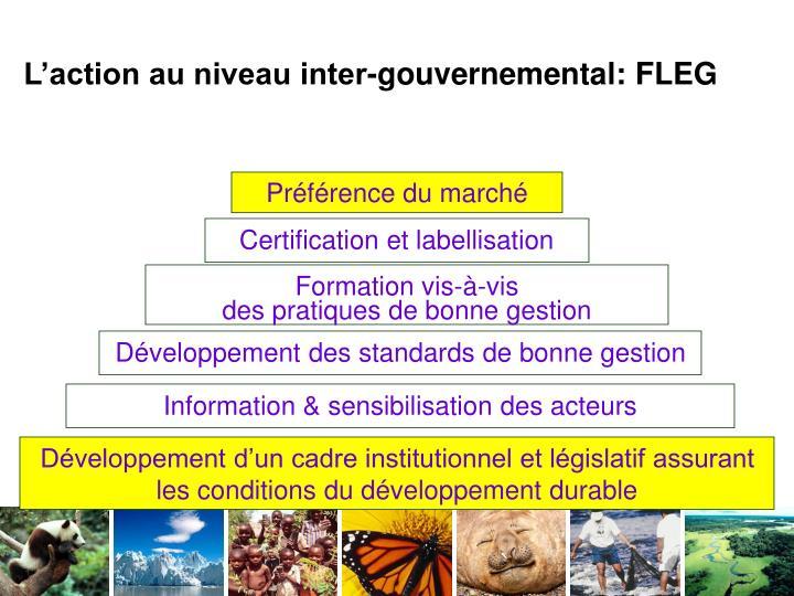 L'action au niveau inter-gouvernemental: FLEG