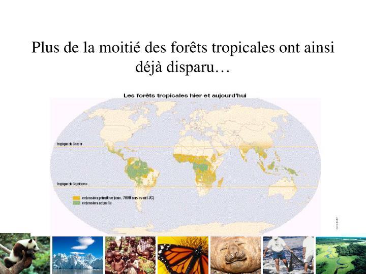 Plus de la moitié des forêts tropicales ont ainsi déjà disparu…