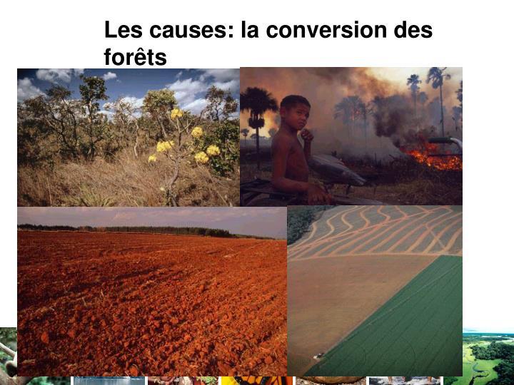 Les causes: la conversion des forêts