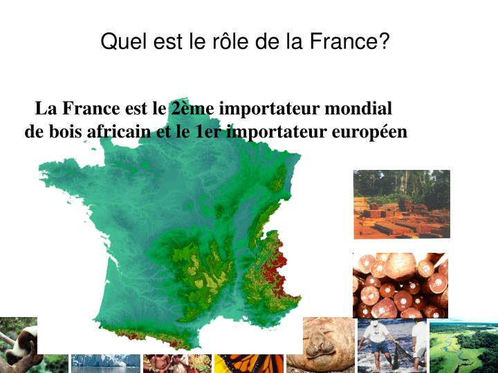 Quel est le rôle de la France?