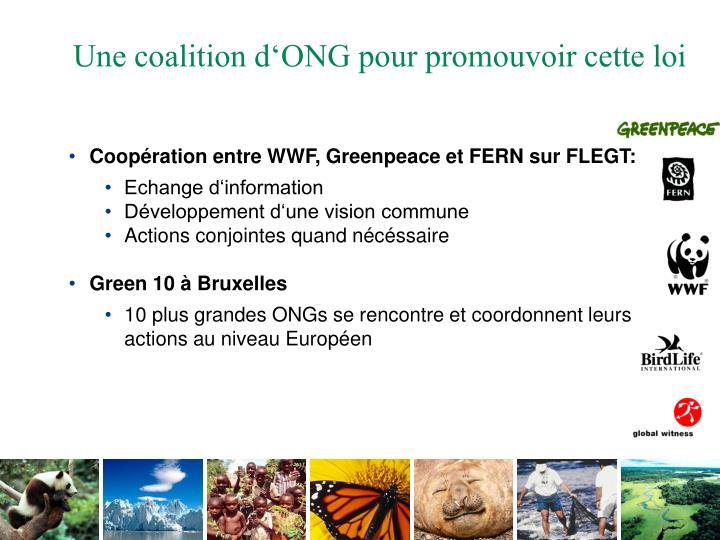 Coopération entre WWF, Greenpeace et FERN sur FLEGT: