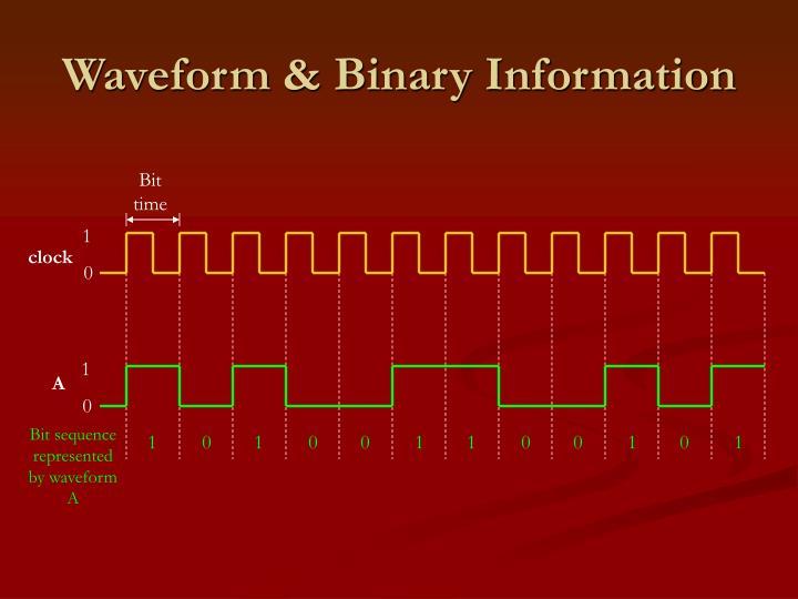Waveform & Binary Information