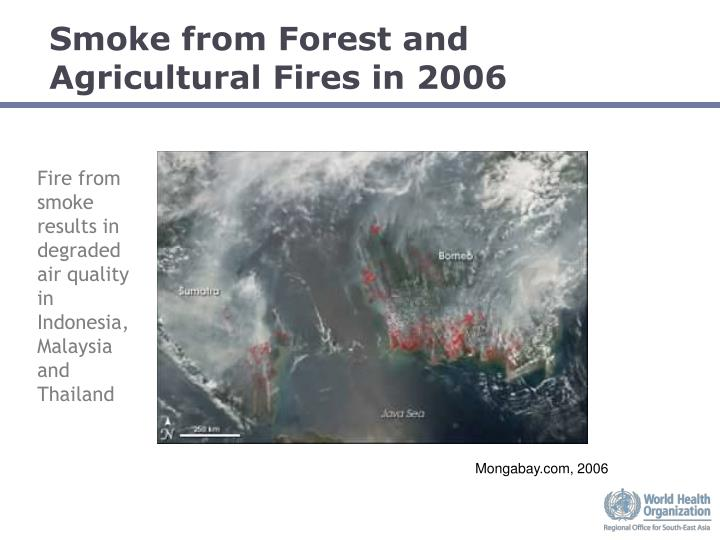 Smoke from Forest and Agricultural Fires in 2006
