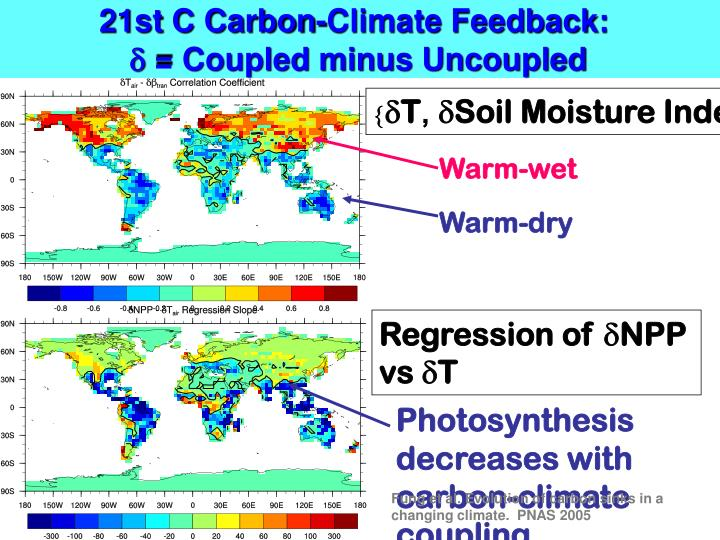 21st C Carbon-Climate Feedback: