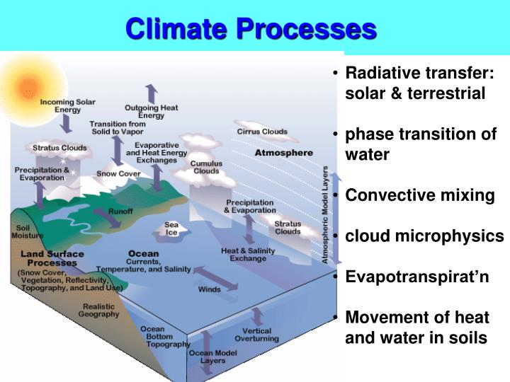 Climate Processes