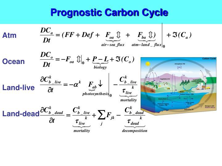 Prognostic Carbon Cycle