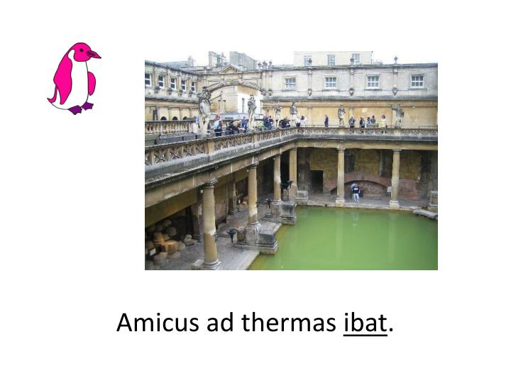 Amicus ad thermas