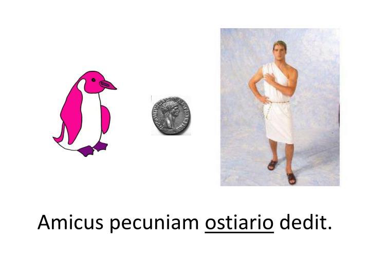 Amicus pecuniam