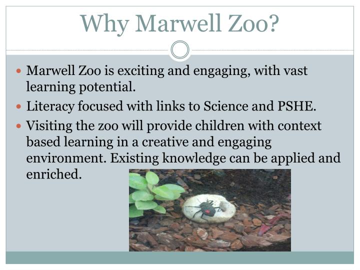 Why marwell zoo