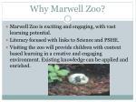why marwell zoo